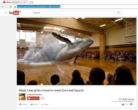 Image of a whale in school gym hall