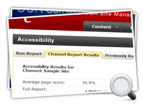 Accessibility Report Detailed Screenshot Mini